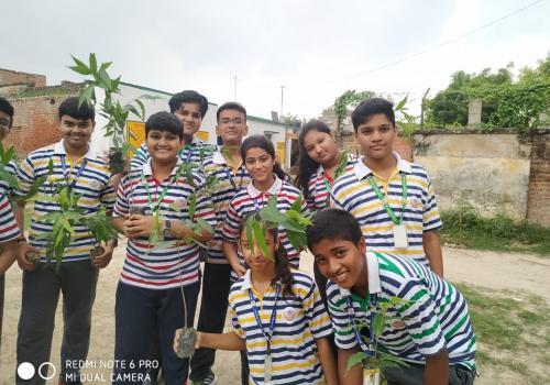 My Green Brigade