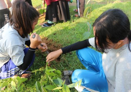 It is the students' green action project in Kampar regency Riau province, stabilizing the  hazardous effect of palm trees plantation (abration of river canal)