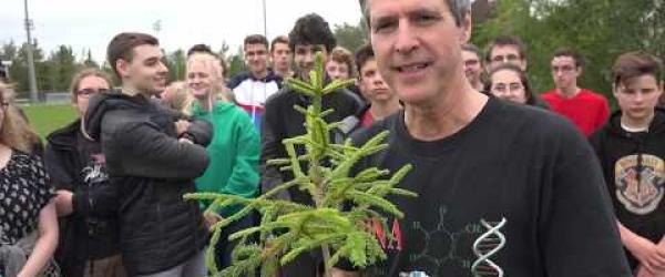 Embedded thumbnail for We planted trees in the Etchemins High School Levis Quebec Canada