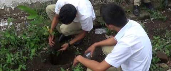 Embedded thumbnail for Plantación de arboles (Plantatón)