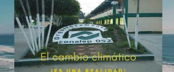 Embedded thumbnail for HUERTO ESCOLAR
