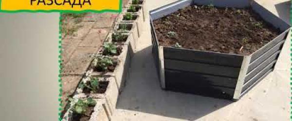 """Embedded thumbnail for Създаване на ЕкоЦентричан образователна градина в ПГ""""Петър Парчевич""""-гр.Раковски"""